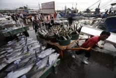 Un pescador carga con varios ejemplares de atún en el puerto de Pescado en General Santos (Filipinas). Filipinas es uno de los mayores países productores de pescado fresco y atún en lata. (Ritchie B. Tongo / EFE)