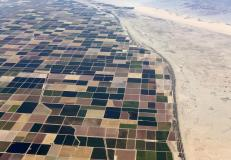 Agricultural farm land is shown next to the desert in the central valley near El Centro, California, May 31, 2015. California is enduring its worst drought on record. REUTERS/Mike Blake