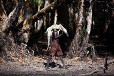 Cazando cocodrilos en Australia