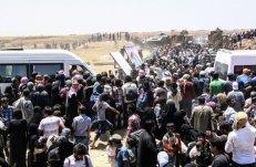 Refugiados sirios esperan a ser transportados después de cruzar hacia Turquía desde la ciudad siria de Tal Abyad, cerca la localildad fronteriza de Akcakale en la provincia de Sanliurfa.